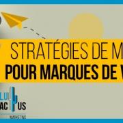 Blucactus-Strategies-de-marketing-pour-marques-de-vetements.j